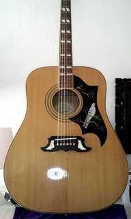 Epiphone dove acoustic guitar beautiful non electric