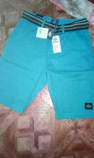 Shorts dickies