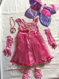 Princess Fairy Costume