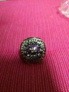 WWE Hall Of Fame Ring 2004 Replica