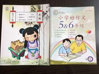 P5 & P6 Chinese Compo Book