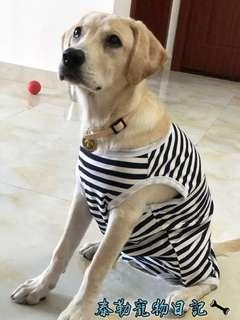(PO) #74 Pet Dog Large Breed Fashion Clothing Top