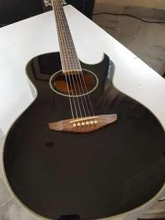 Levin 6 String Acoustic Guitar