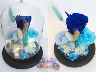 Fresh Preserved Flowers- Flower DOME (BLUE)