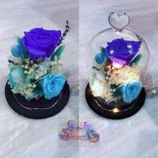 Fresh Preserved Flowers- Flower Dome