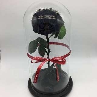 🚚 Premium Preserved Ecuadorian Roses