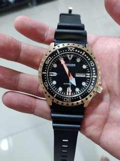 Citizen Automatic Dive Watch Gold