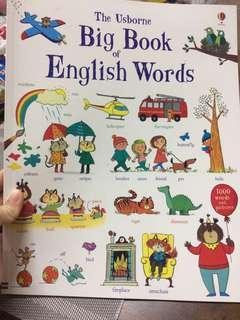 Usborne Big Book of English Words