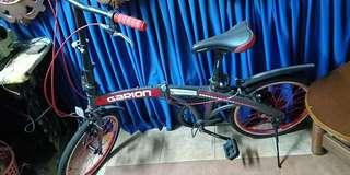 Foldable Garion Bicycle