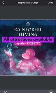 Rainforest lumina rainforest lumina rainforest zoo zoo zoo