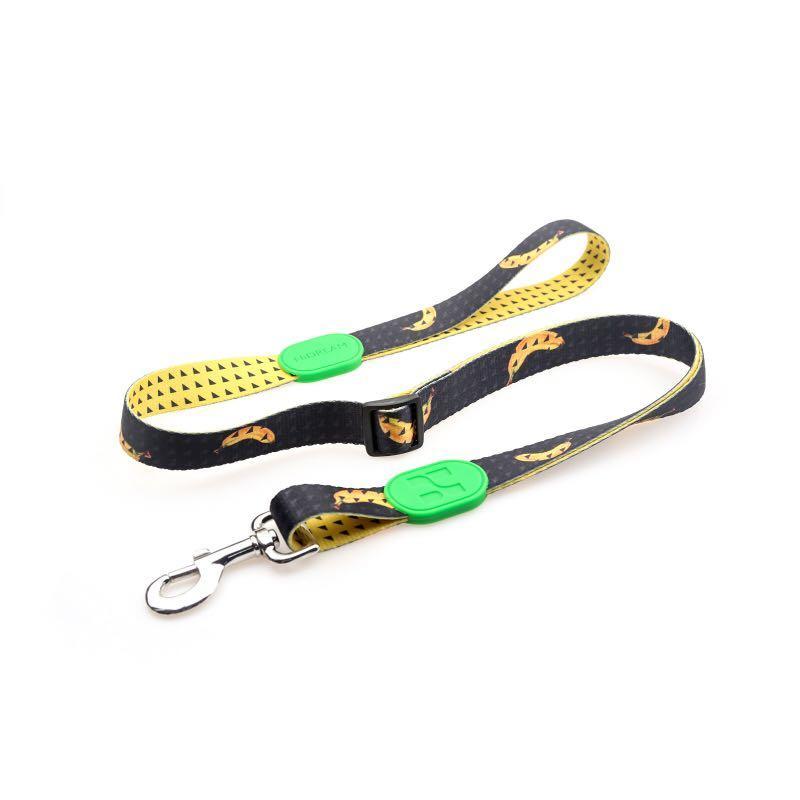 Pet Dog Cat Leash