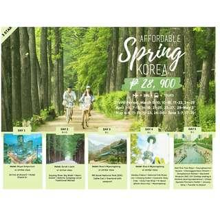 AFFORDABLE SPRING KOREA