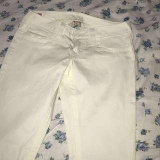 True Religion Sample Jeans