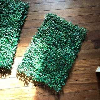 Green hedge 3 pcs available 120 each