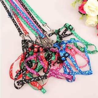 SMALL PET Leash with Harness