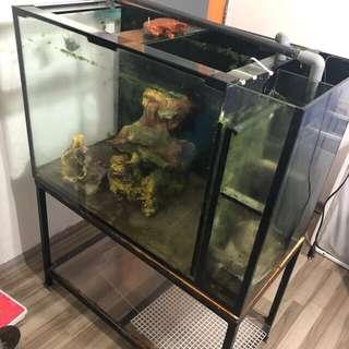 3ft ios tank with stand