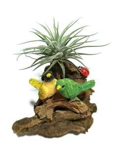 【Loving 1 】Birds on Driftwood Miniature Figurine Ornament with Air plant (Tillandsia) Display Terrarium Decoration for Home Office Gift