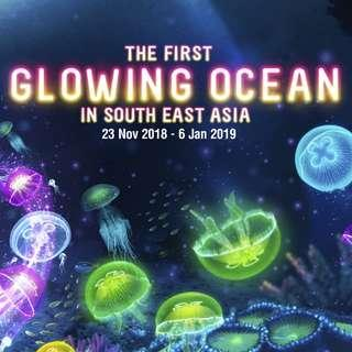 Bundle Deal of S.E.A. South East Asia Aquarium + The Maritime Experiential Museum Adult Dated One-Day Ticket