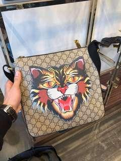 Gucci angry cat