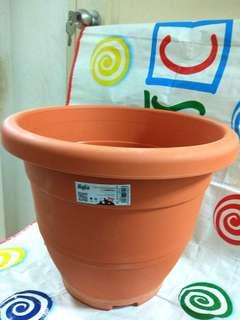 #MRTYishun Big & Easy to Carry Plant Pot                                 (UP $15 Now $10)