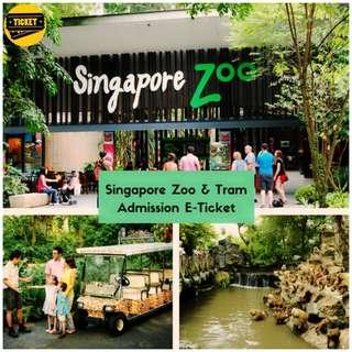 SG ZOO 🚩 $23 for Adult
