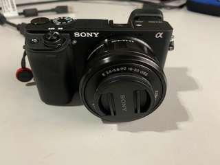 Sony Alpha 6300, 18-200, 16-50 and a Voigtlander 50mm F1.1 with Metabones adaptor for Sony E-mount.