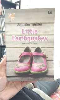 [BOOK] Little earthquake