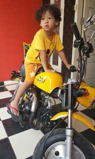 Motor Mini Monkey