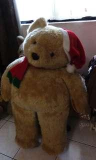 泰迪熊   聖誕熊