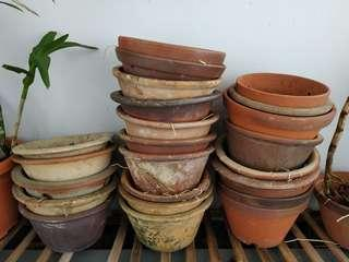 Orchid Pots Giving Away Free (Reserved)