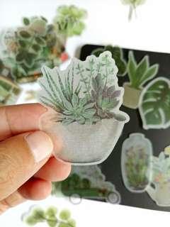 15pcssucculent plants garden Deco DIY scrapbooking Planner journal