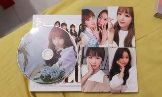 WTS/WTT izone iz*one rose