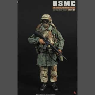 """1991 Operation Desert Saber 1/6 USMC """"Jarhead"""" 12"""" Military Figure"""