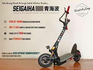 SEIGAIHA 48V Peak at 1600W Electric Scooter Up to 80KM