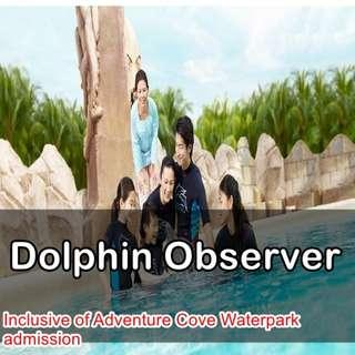 🚚 Dolphin Observer - Adventure Cove Waterpark - Best Price