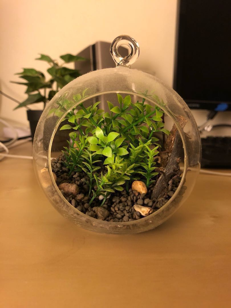 Terrarium Artificial Plants Everything Else On Carousell