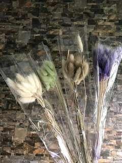 🚚 Dry rabbit tail cut flower bundle