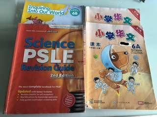 P6 Textbooks