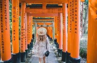 SALE! Kyoto Bus Tour from Osaka (with lunch and entrance fees)