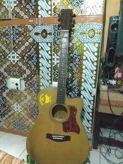 Guitar acoustic electric custom