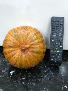 Play Pretend Jumbo Big Toy Pumpkin Plastic Cooking House Education Fruits Vegetables Rare