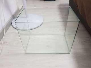1Ft Glass Tank