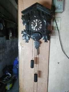 Cuckoo Clock (Japan Poppo)
