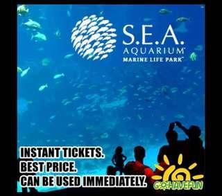 🚚 🐋 SEA Aquarium Ticket 🐋