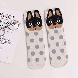 Brand new cute French bulldog socks polka dots