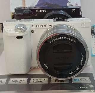 Credit Camera Bunga 0‰