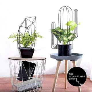 ⚡️[Instock!] Qua Cactus Nordic Metal Plant Pot
