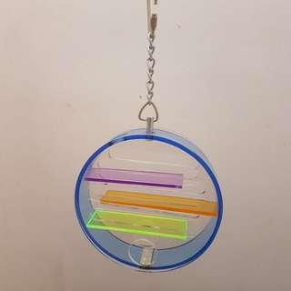 PT21 Acrylic Foraging Toy ( FREE Delivery )