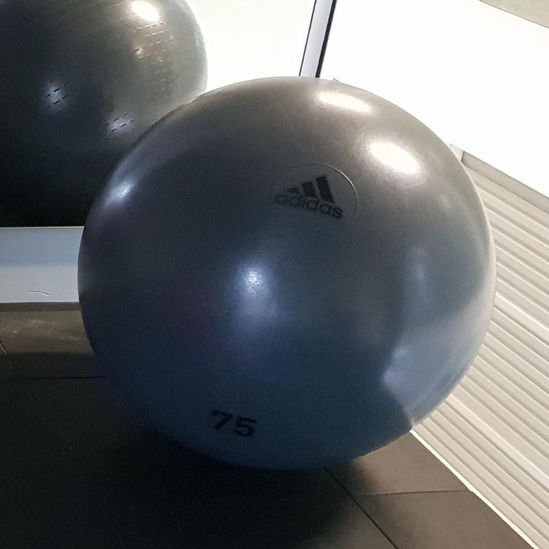 Tiempo de día Médico árabe  Gym Ball 75