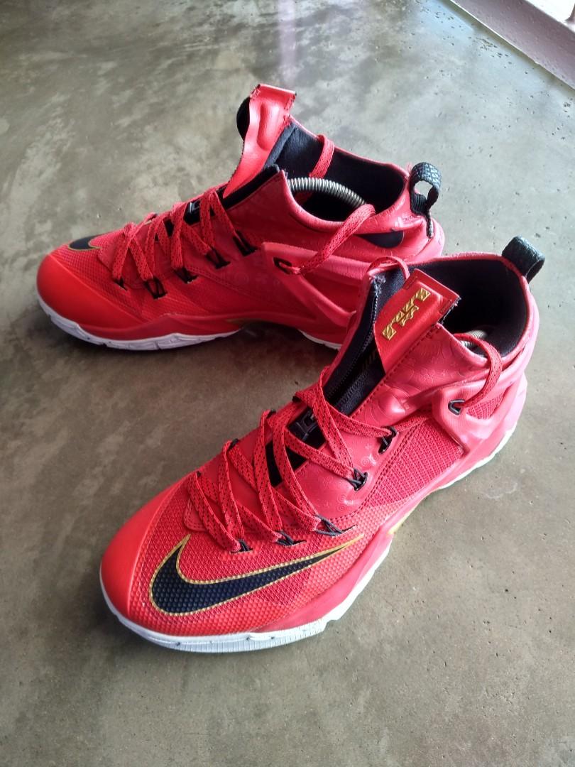 promo code d2a22 11a8b Nike Lebron Ambassador 8